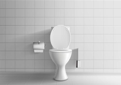 domace cistenie wc