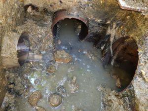 Krtkovanie - čistenie odpadu - Podunajské Biskupice